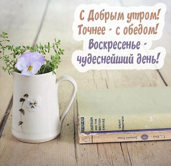 Прикольная открытка с добрым утром воскресенья