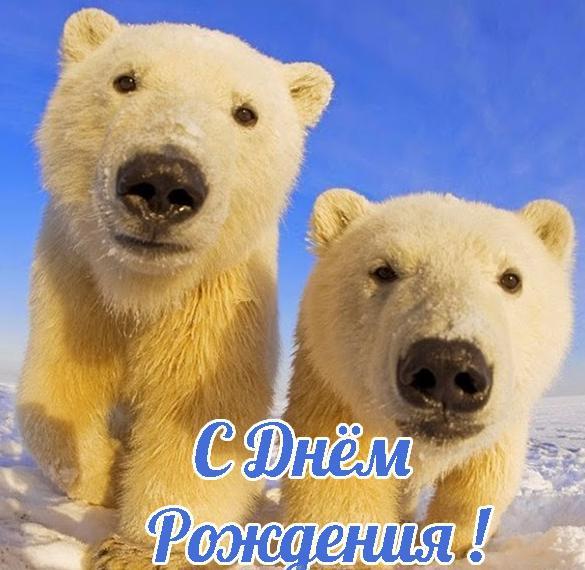Открытка с медвежатами с днем рождения