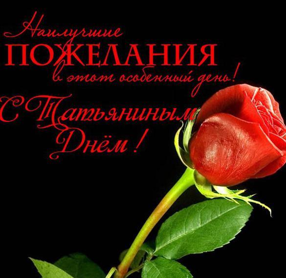 Открытка с поздравлением на Татьянин день