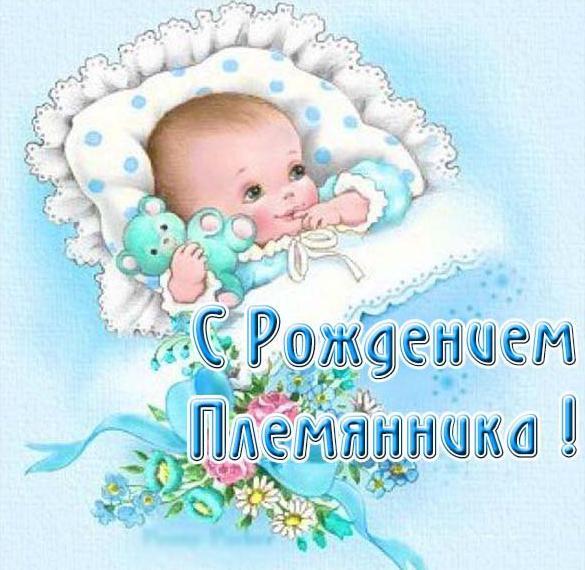 поздравления с рождением племянника картинки на телефон шейк