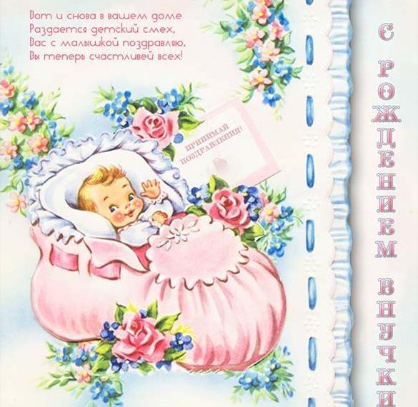 Открытка с рождением внучки бабушке и дедушке