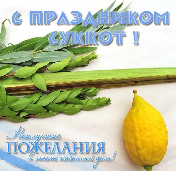 Открытка с праздником Суккот