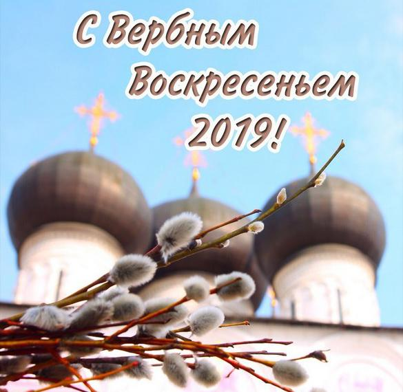Открытка с Вербным Воскресеньем 2019 год