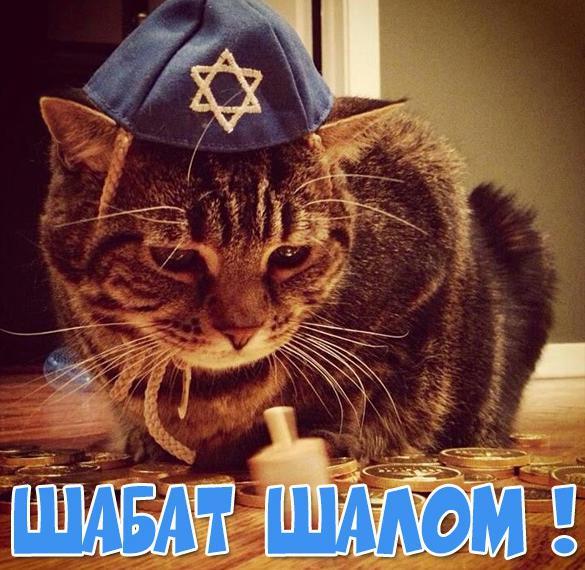 Прикольная открытка Шабат шалом на русском