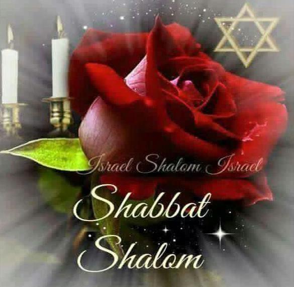 Открытка Шабат шалом с цветами