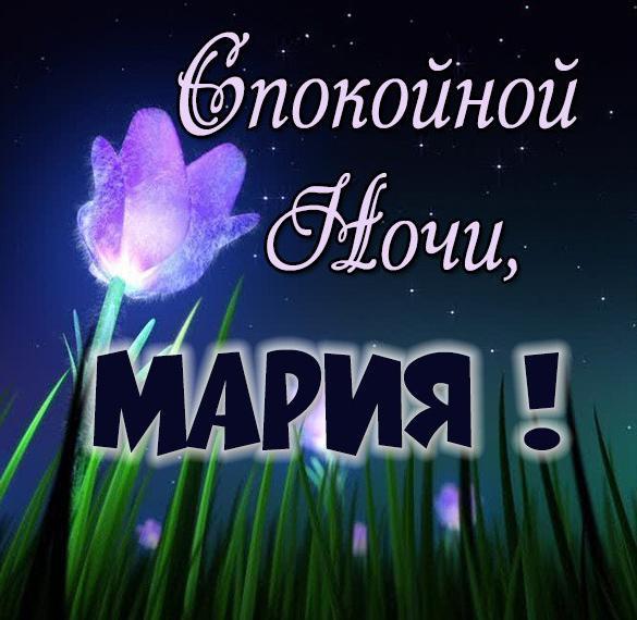 Открытка спокойной ночи Мария