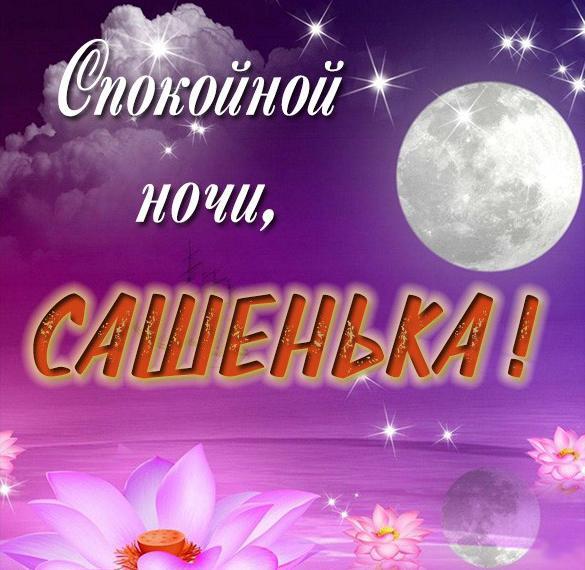 Открытка спокойной ночи Сашенька