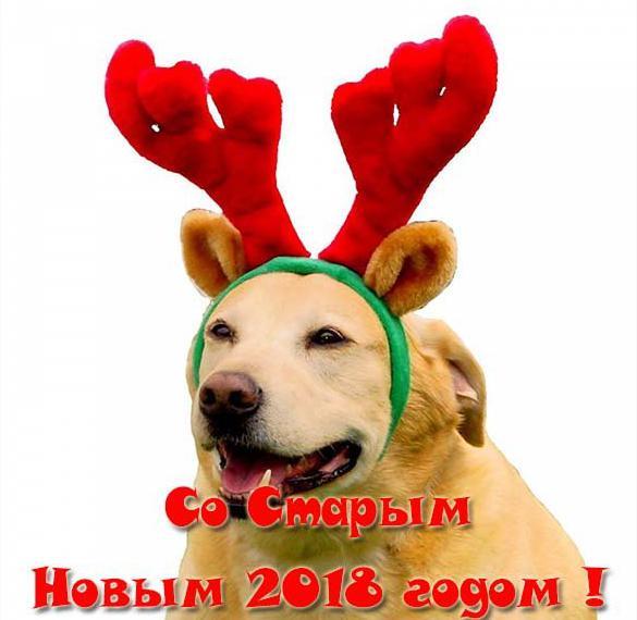 Открытка на Старый Новый год 2018 собаки