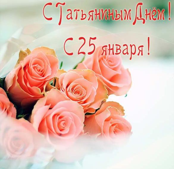Открытка на праздник Татьянин день