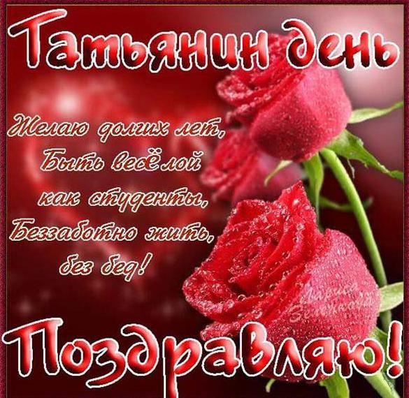 Электронная открытка на Татьянин день