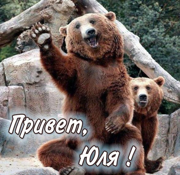 Открытка Юля привет