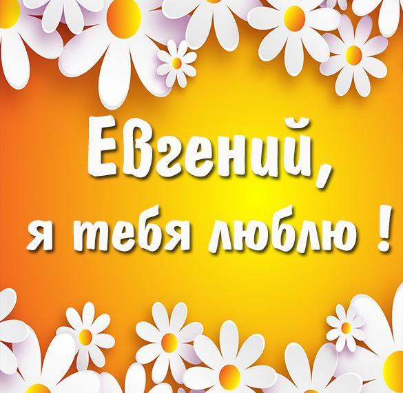 Открытка я люблю тебя Евгений