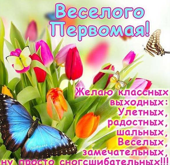 Фото картинка на Первомай