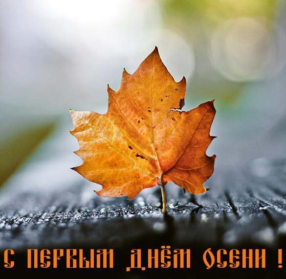 Картинка на Первый день осени 1 сентября