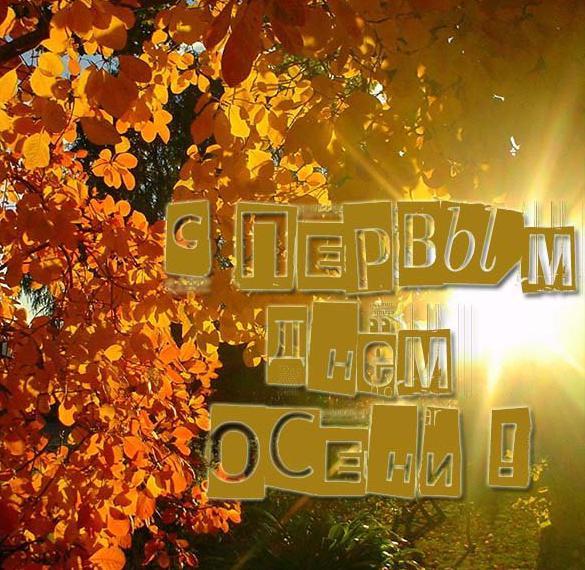Картинка на Первый день осени и 1 сентября