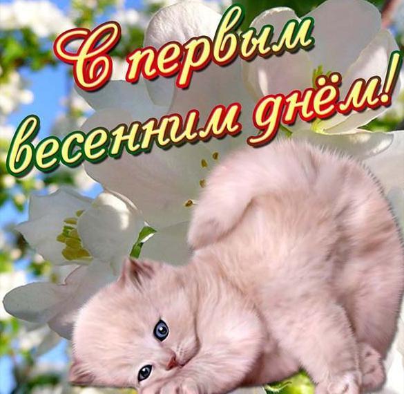 Картинка на Первый день весны 1 марта