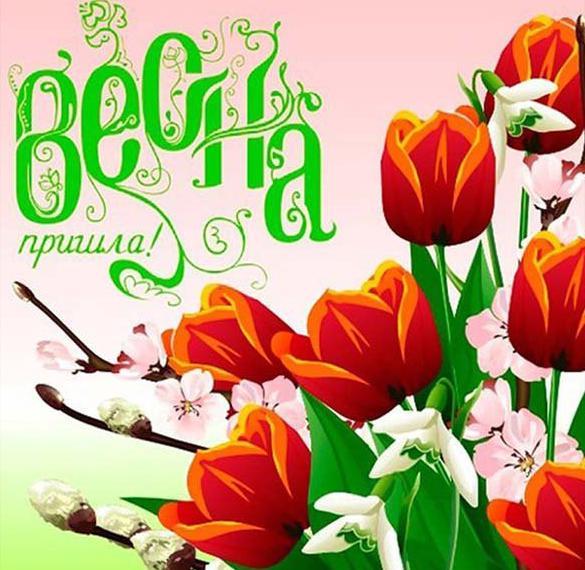 Картинка Первый день весны завтра