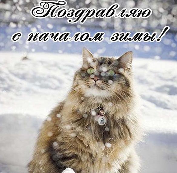 Виртуальная открытка на первый день зимы