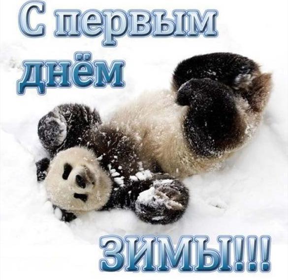 Прикольная открытка на первый день зимы