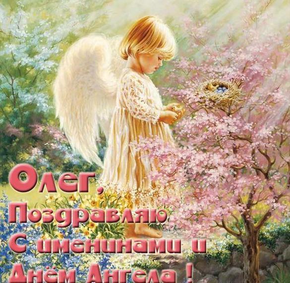Картинка с красивым поздравлением с днем Олега