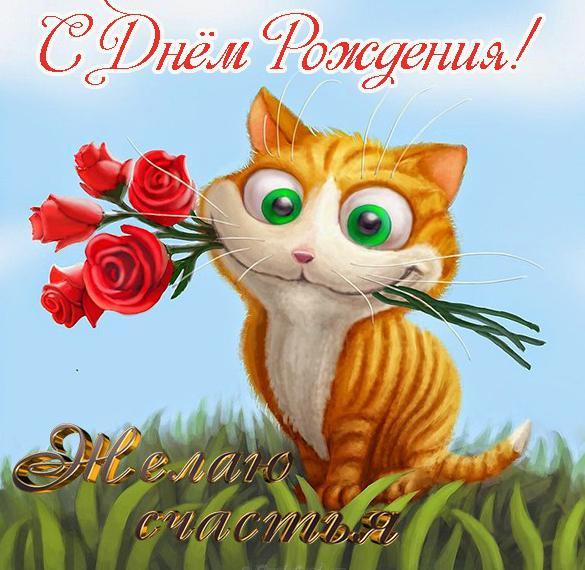 Поздравительная открытка с днем рождения с котиками