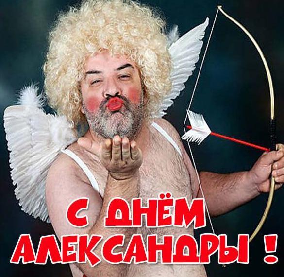 Прикольная картинка с поздравлением с днем Александры