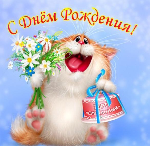 Поздравление с днем рождения в открытке с кошками
