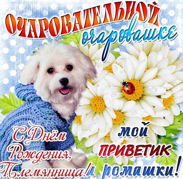 Поздравление с днем рождения племяннице в красивой открытке