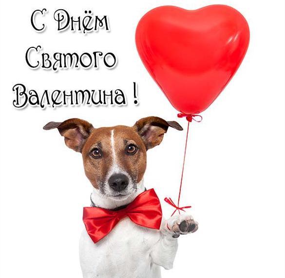 Прикольная открытка с поздравлением с днем Святого Валентина