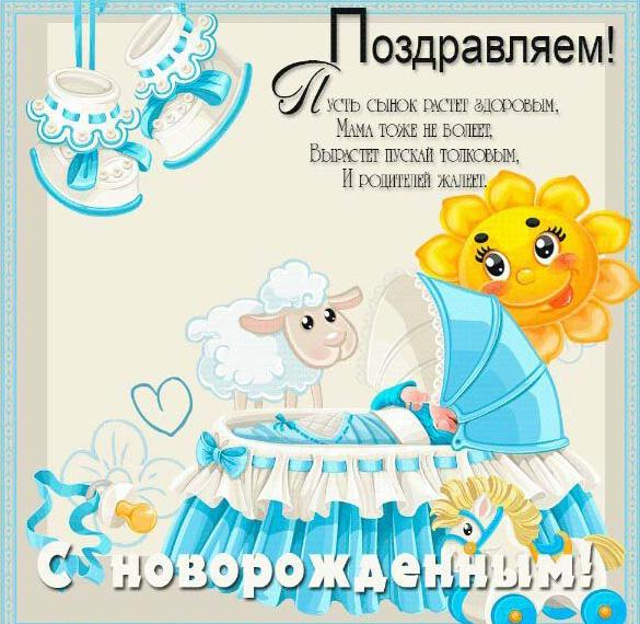 pozdravlenie-s-sinom-mame-prikolnie-kartinki foto 16