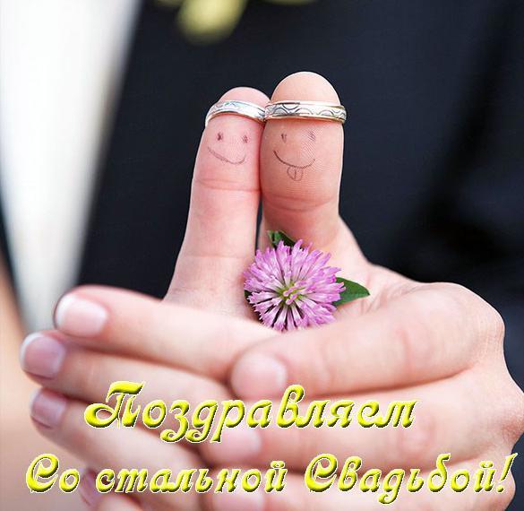 Поздравление со стальной свадьбой в прикольной открытке