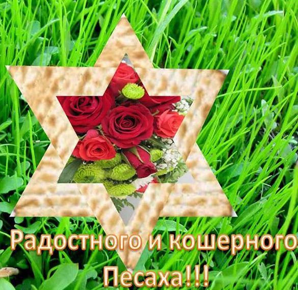 Картинка на праздник Песах
