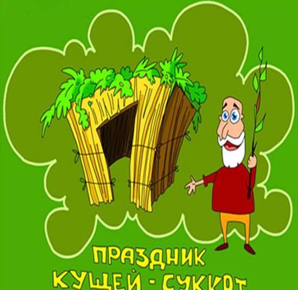 Электронная открытка на праздник Суккот