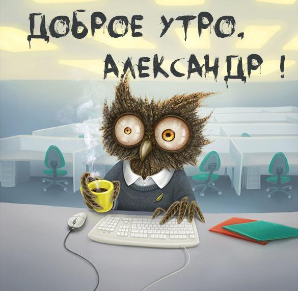 Прикольная картинка доброе утро Александр