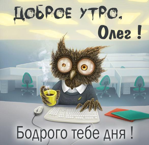 Прикольная картинка доброе утро Олег