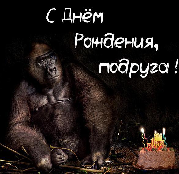 Прикольная картинка с днем рождения для подруги
