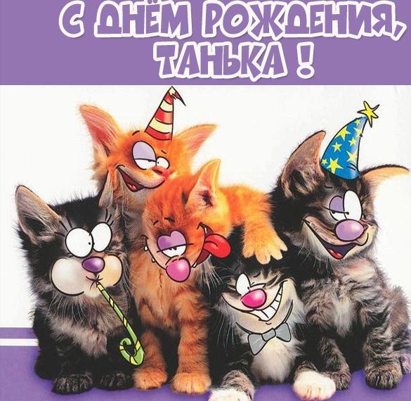 Прикольная картинка с днем рождения для Таньки