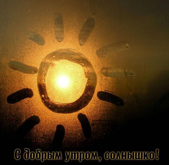 Прикольная картинка с добрым утром солнышко