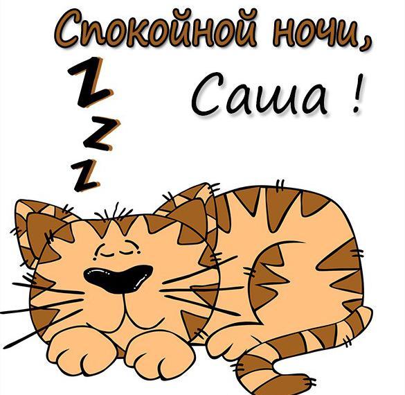 Прикольная картинка спокойной ночи Саша