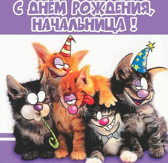 Прикольная открытка с днем рождения руководителю женщине