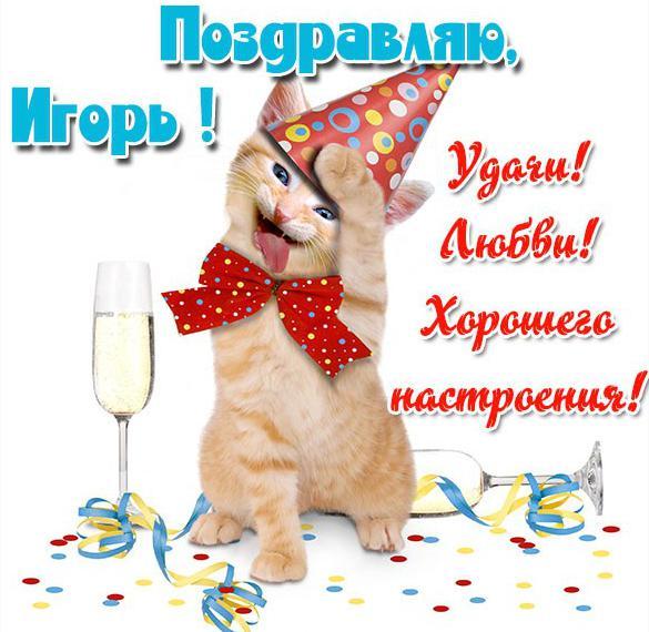 Прикольная открытка с именем Игорь