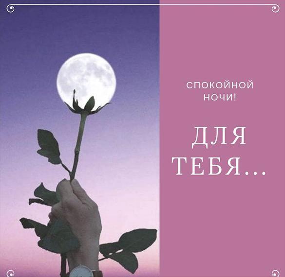 Романтическая картинка спокойной ночи любимой девушке