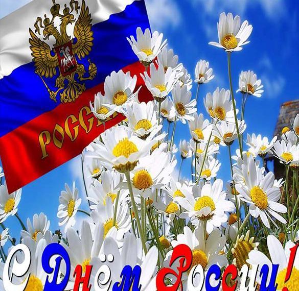 Картинка с днем России