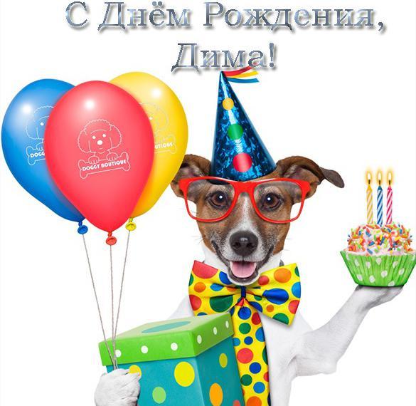 Прикольная открытка с днем рождения Дима