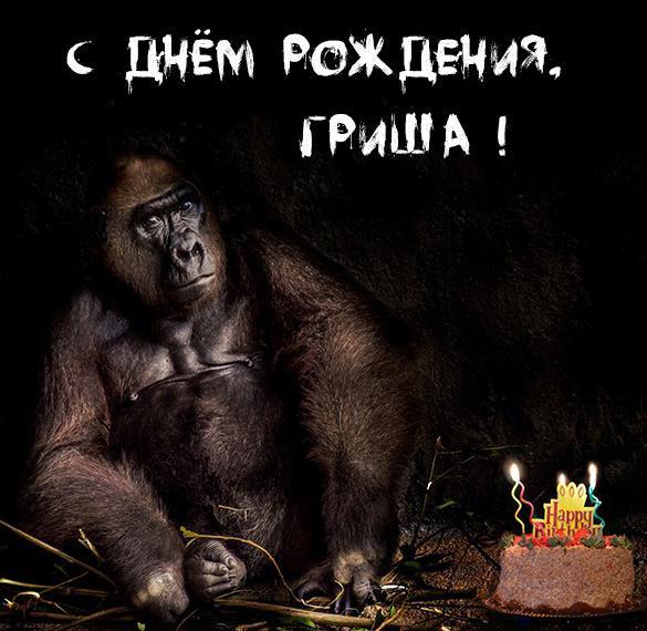 Прикольная смешная картинка с днем рождения Гриша