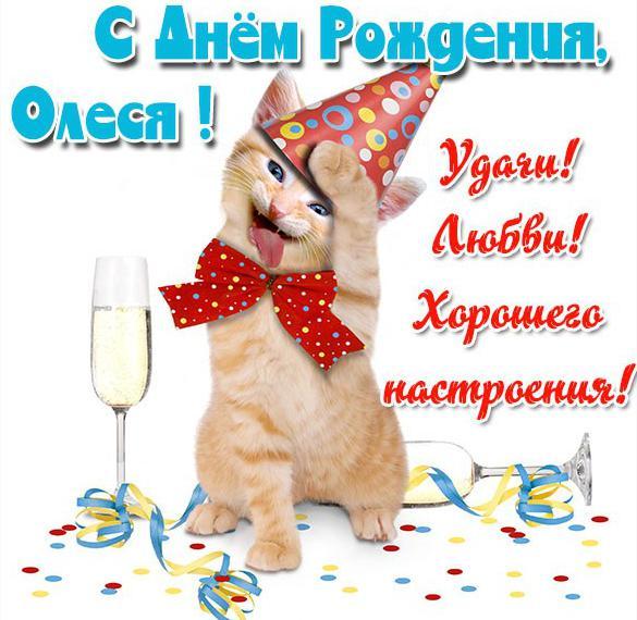 Прикольная картинка с днем рождения Олеся женщине