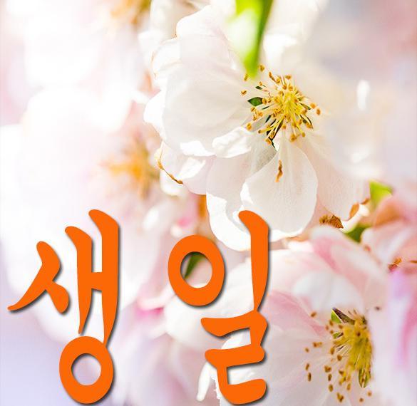 С днем рождения по корейски в картинке