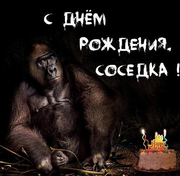 Прикольная картинка с днем рождения соседка