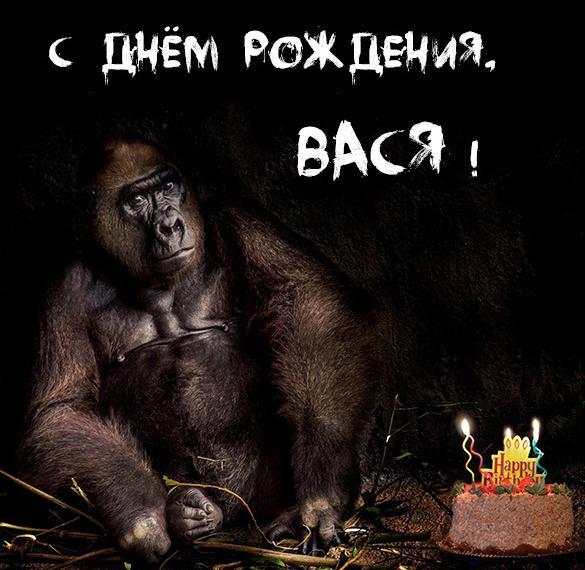 Открытка с днем рождения Вася с приколом