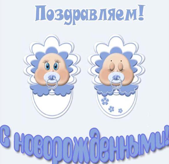 Открытка с новорожденными мальчиками двойняшками